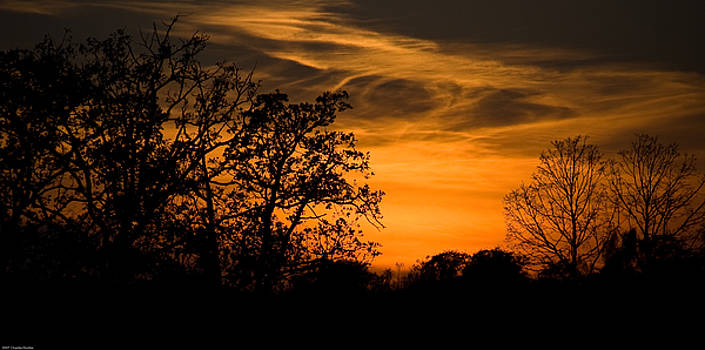 Sunset Song by Charles Dobbs