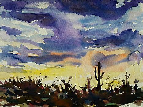 Xueling Zou - Sunset Sonora