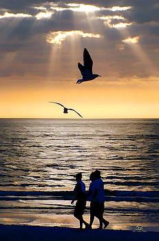 Sam Davis Johnson - Sunset Stroll