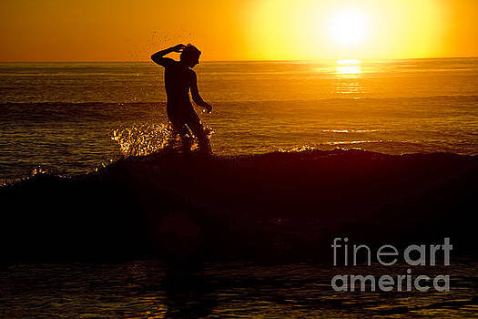 Sunset Surfer by Daniel  Knighton