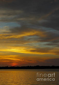 Sunset Swirls by Nancy Yuskaitis