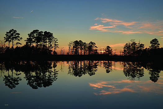 Dana Sohr - Sunset Symmetry