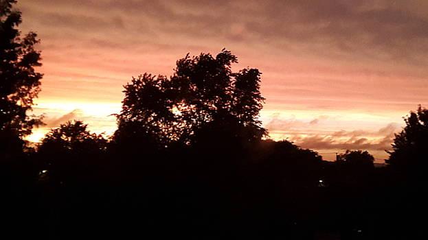 Sunset by Talabiou Diallo
