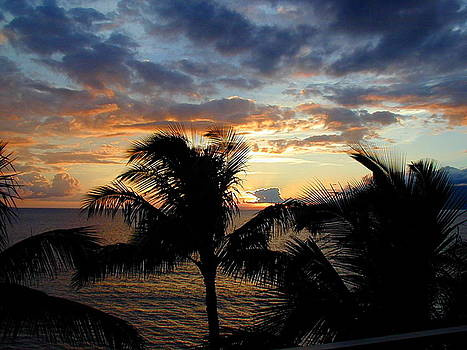 Sunset through the Palms by Cathy P Jones