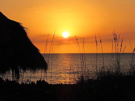 Sunset Through the Tiki Hut by Ron Enderland