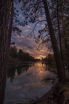 Sunset through the trees by Diane Hawkins
