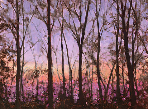 Sunset Through the Trees by Lynne Adams