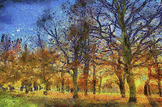 Sunset Trees Art by David Pyatt