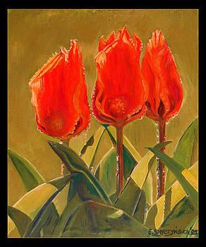 Sunset tulips  by Ewald Smykomsky