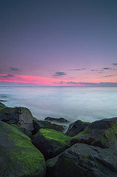 Sunset view from a rocks with moss  by Andriy Stefanyshyn