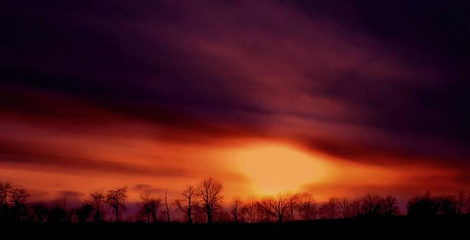 Sunset by Virginia Folkman