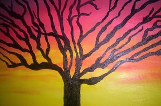 Sunset Wanderer by Becca Haney