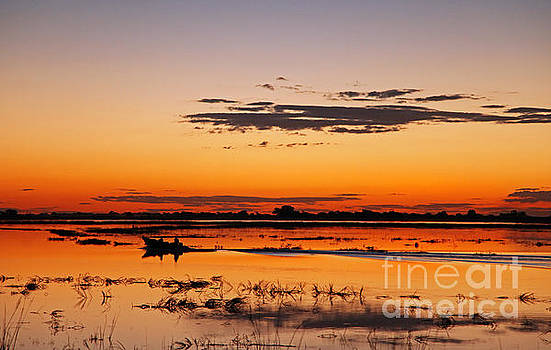 Sunset with boat at Chobe river, Botsuana by Wibke W