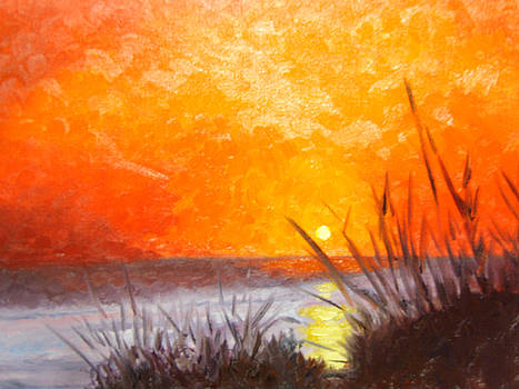 Sunset with Grass by Marcia  Hero