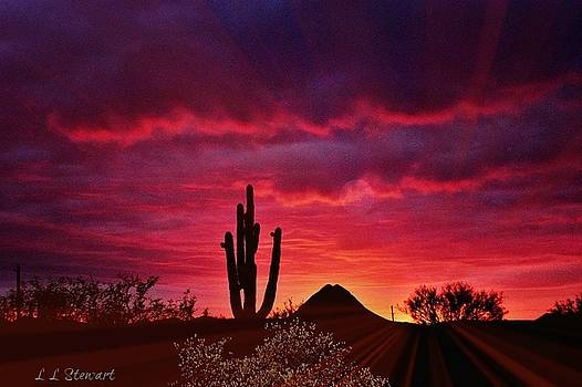Sunsets Always by L L Stewart