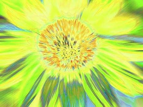 Sunshake by Cris Fulton