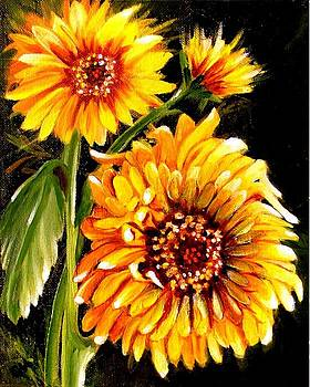 Sunshine by Carol Allen Anfinsen