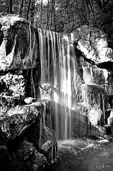Sunshine Falls Black and White by Lj Lambert