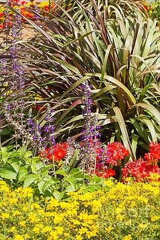 Sunshine Garden by Marilyn Cornwell