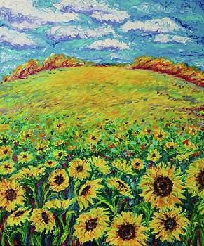 Sunshine Hill by Elizabeth Cox