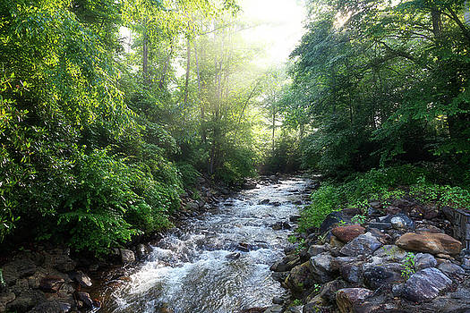 Jill Lang - Sunshine on the Creek