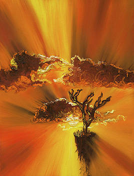 Sunshower by Shelley Irish