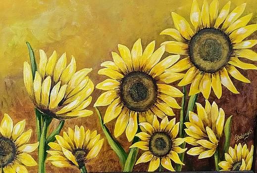 Sunspots by Elaine Balsley