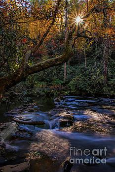 Barbara Bowen - Sunstar over Abrahms Creek