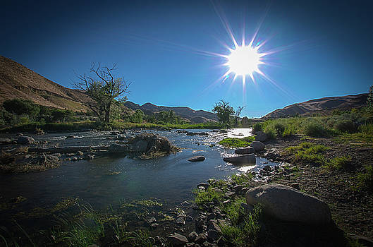 Sunstreams to the River by Joie Cameron-Brown