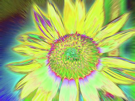 Sunswash by Cris Fulton