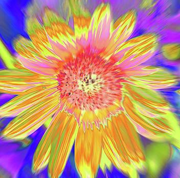 Sunsweet by Cris Fulton