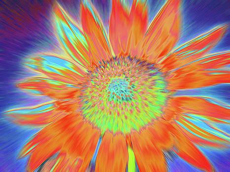 Sunswept by Cris Fulton