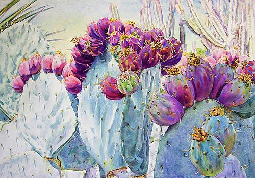 Sunwashed Cactus by Kathleen Ballard