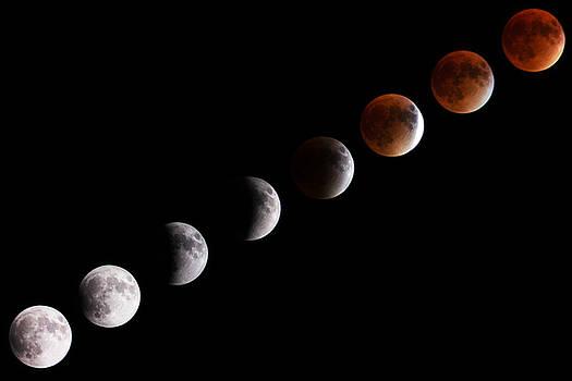 Super Blood Moon by Casey Becker