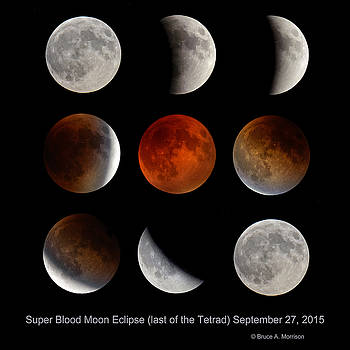 Super Blood Moon Eclipse by Bruce Morrison