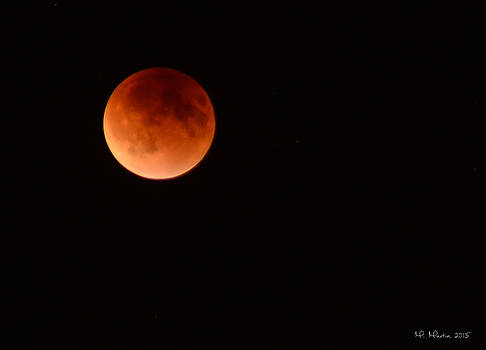 Super Blood Moon by Melinda Martin