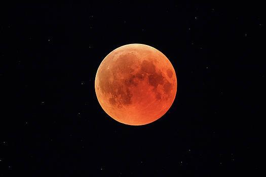 Super Bloody Moon, full eclipse phase against starry sky background by Lukasz Szczepanski