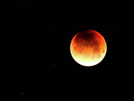 Super Blue Blood Moon 2 by Michele James
