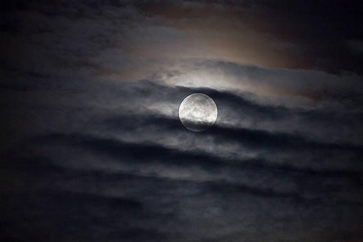 Super-cold Moon Dec '17 by Mary Nash-Pyott