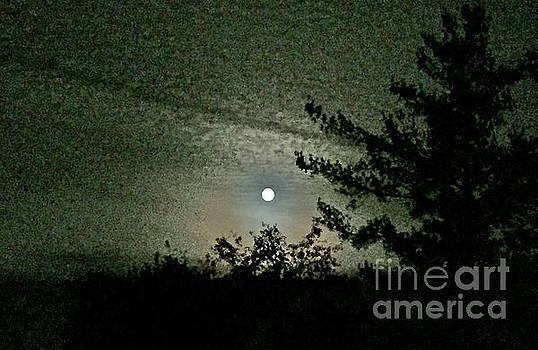 Super Moon Colors by Barbara Plattenburg
