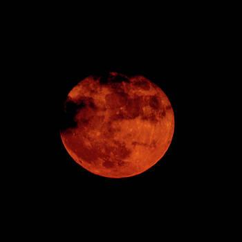 Super Moon by Deb Henman