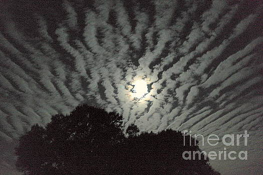 Super Moon by Irma BACKELANT GALLERIES