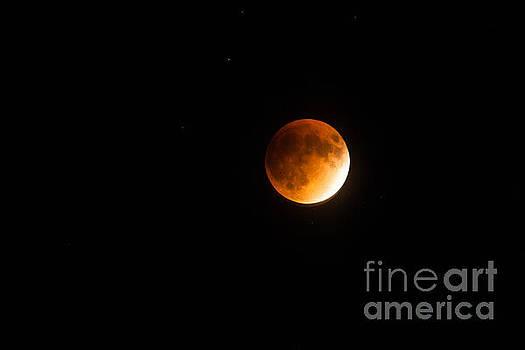 Dale Powell - Super Moon Lunar Eclipse