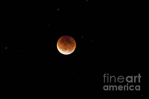 Super Moon Lunar Elipse Images- 2015 by Janie Johnson