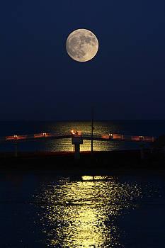 Raymond Salani III - Super Moon
