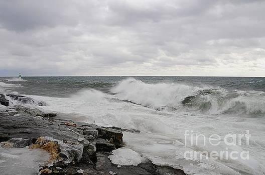 Superior Wild Waves by Sandra Updyke