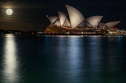 Daniela Constantinescu - Supermoon at Sydney Opera House