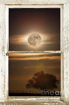 Supermoon Country Tree Rustic Window View by James BO Insogna