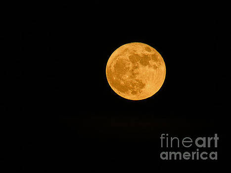 Supermoon Dec3rd by Robert Knight