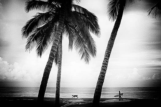 Surf Mates by Nik West